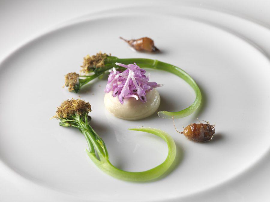 Sebastian Frank –  einer der 3 kulinarischen Musketiere…