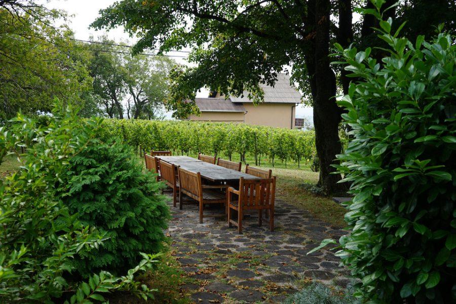 Mein Wein der Woche – Chardonnay Plešivica, Kroatien