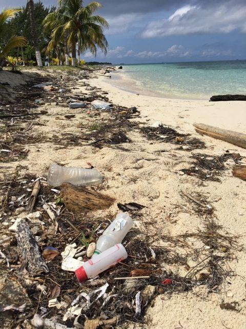 Tag des Meeres und der Plastikmüll